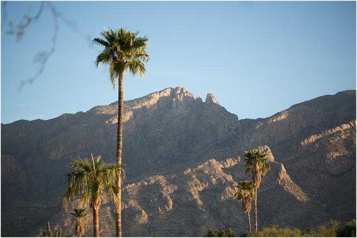 ArizonaBlog_0001